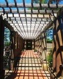 阴影在庭院里 免版税图库摄影