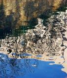 阴影在水中 免版税库存照片
