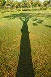 影子结构树 免版税库存照片