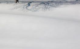 影子雪 免版税库存图片