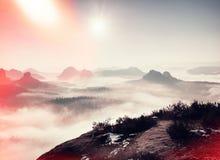 影片作用 在多小山landcape的桃红色破晓 在的秋天有薄雾的早晨美丽的小山 树峰顶  免版税库存照片