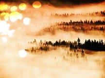 影片作用 在多小山landcape的桃红色破晓 在的秋天有薄雾的早晨美丽的小山 树峰顶  库存图片