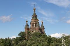 彼得和保罗大教堂在Peterhof,俄罗斯 免版税库存图片
