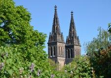 彼得和保罗大教堂的两个塔  免版税库存照片