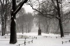 彼得斯堡降雪st 免版税图库摄影