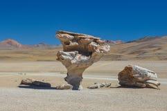 彼德拉del Arbol,苏尔Lipez,南玻利维亚 免版税图库摄影