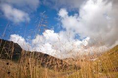 往天空和山背景的干草 免版税库存图片