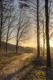 往太阳的道路 库存图片