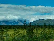 往山在森林上和树的看法在阿拉斯加团结了St 免版税库存照片