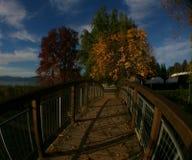 往秋天季节的一条小路 库存照片