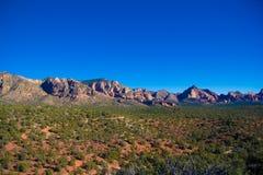 往视图的峡谷美国梧桐 免版税库存照片
