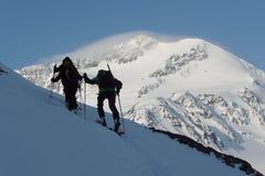 往Cevedale山顶的Skitourers 图库摄影