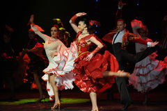 征服象公牛西班牙佛拉明柯舞曲这奥地利的世界舞蹈的一名妇女 免版税库存照片