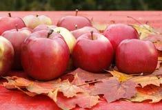 很多成熟水多的红色苹果静物画在一个木选项说谎 库存照片