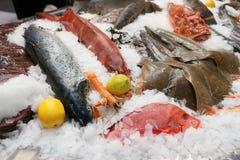 很多新鲜的海鱼 免版税库存照片