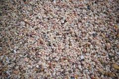 很多残破的小珊瑚,海壳小块在沙子在prachuapkhirikhan,泰国的 免版税库存照片