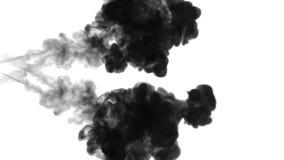 很多流程、乌云或者烟,墨水在慢动作的白色注射被隔绝 黑颜色泡影在水中 墨似 股票视频