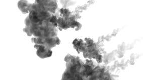 很多流程、乌云或者烟,墨水在慢动作的白色注射被隔绝 黑颜色流程在水中 墨似 库存例证