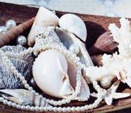 很多海壳和perls在艺术弄乱 库存图片