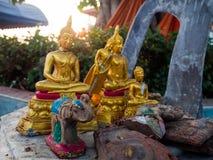 很多老Budda图象 免版税图库摄影