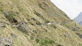 很多背包徒步旅行者在尼泊尔山的道路走 马纳斯卢峰电路艰苦跋涉 股票录像