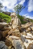 很多花岗岩在塞舌尔群岛137的海岸晃动 库存图片
