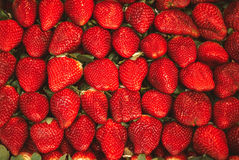 很多草莓宏观照片在充分的框架的 库存照片