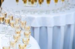 很多酒杯用香槟 酒精背景 免版税图库摄影