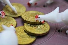 很多鸡临近硬币 库存照片