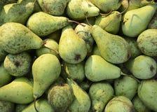 很大数量的有机绿色梨 r ?? 免版税库存图片