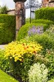 很好趋向的庭院 免版税库存图片