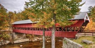 很快河被遮盖的桥 免版税库存图片