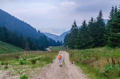 徒步旅行者和她的狗在山风景 库存图片