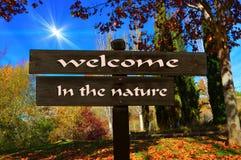 徒步旅行者或旅客的显示自然的 向量例证
