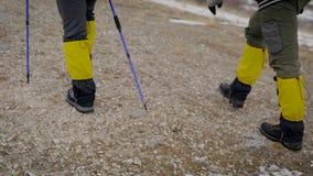 徒步旅行者的腿的后面看法,当他们去上升时,帮助与滑雪杆 股票录像