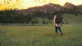 徒步旅行者走在绿色领域的背包徒步旅行者女孩 影视素材