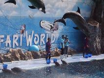 徒步旅行队世界动物园 库存照片