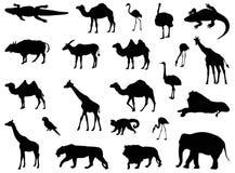徒步旅行队动物剪影 库存例证