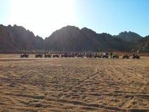 徒步旅行队在沙漠 库存图片
