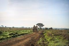 徒步旅行队旅行通过非洲大草原 免版税库存图片