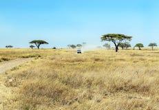 徒步旅行队汽车在坦桑尼亚 免版税图库摄影