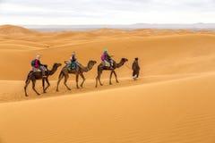 徒步旅行队的游人,摩洛哥 库存照片