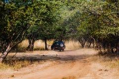 徒步旅行队车的游人在Ranthambore森林 库存照片