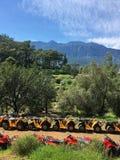徒步旅行队通过在方形字体自行车的山 库存照片