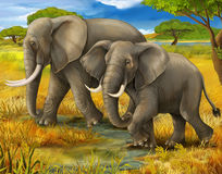 徒步旅行队-大象 向量例证