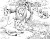 徒步旅行队-狮子和大象 库存图片