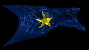 得克萨斯共和国旗子 向量例证