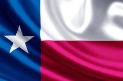 得克萨斯旗子例证 皇族释放例证