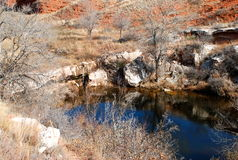 得克萨斯池塘在牧场地 免版税库存图片