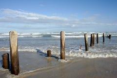 得克萨斯海滩 免版税库存照片